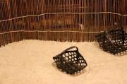黒塗り竹四つ目手付きカゴミニ
